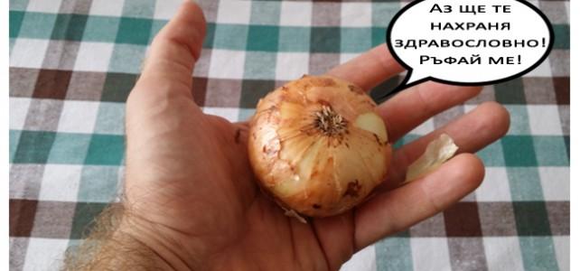Как да се храним 'здравословно'? [за начинаещи!]